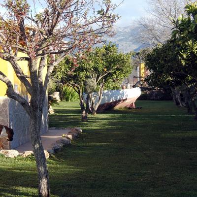 Pasillo del jardin