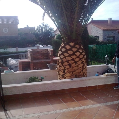 patio altafulla
