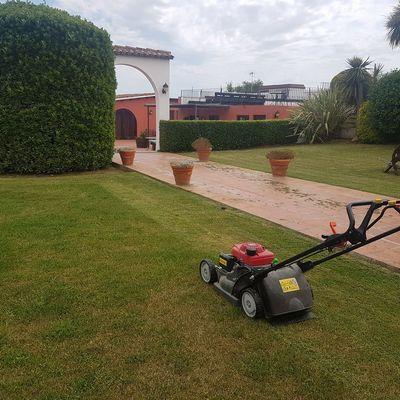 Trabajos jardinería