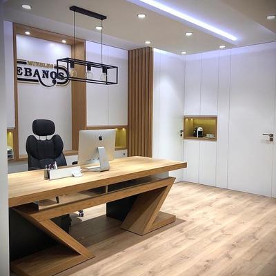 Despacho con paredes paneladas