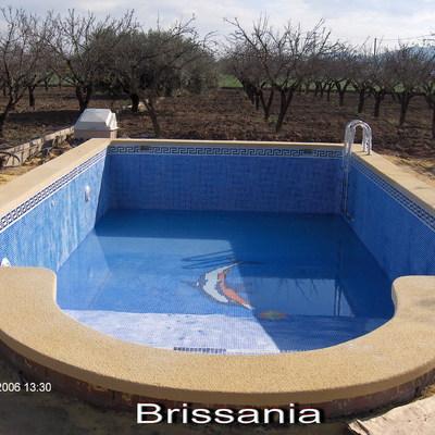 piscina rectangular con coronacion ocre personalizada