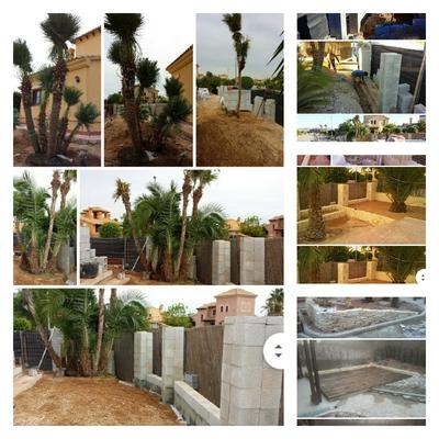 Jardín tropical y Mediterráneo