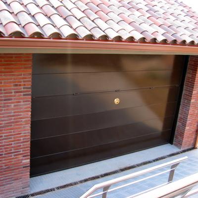 puerta basculante plafonada