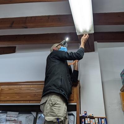 Servicios revisión termitas