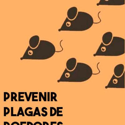 Prevenimos las plagas de roedores