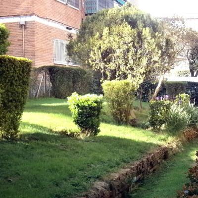 Recortes de Arbustos