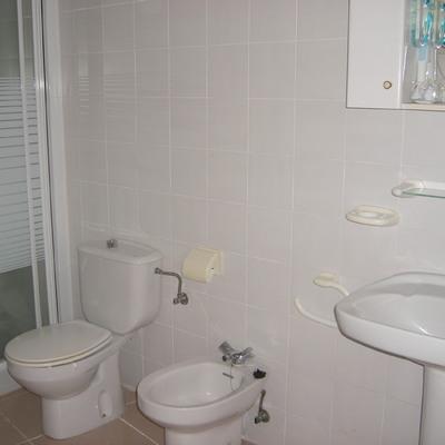 Alicatado baño y piezas