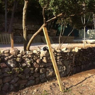 rehabilitar muro de piedras y ajardinar espacio