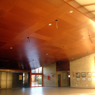 Revestimiento de techo del salón de actos