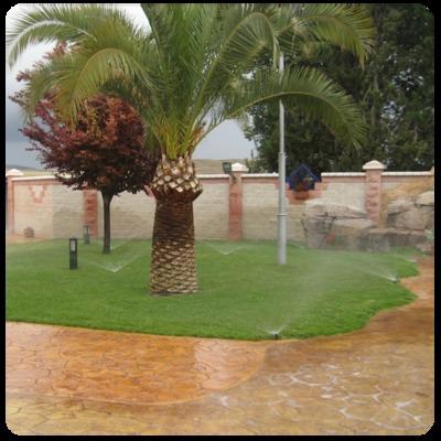 Jardín césped natural
