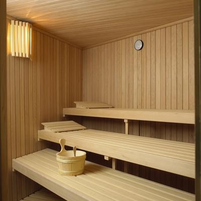 Saunas de interior estándar