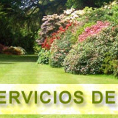 BIZNAGARDEN Empresa de jardinería en Málaga.