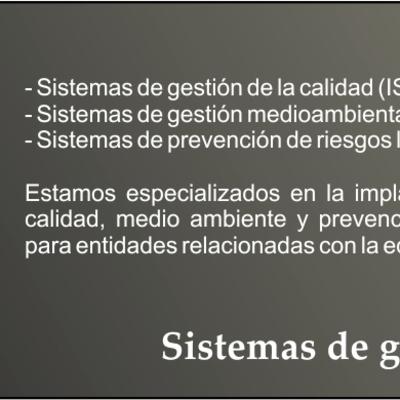 Sistemas de gestión de la calidad, medio ambiente y prevención de riesgos laborales