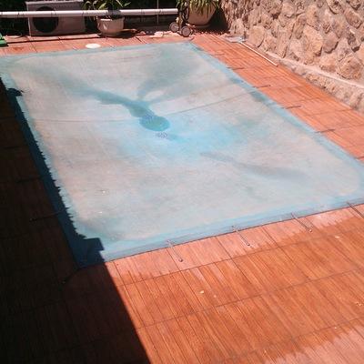 Solado palma piscina y bordillo