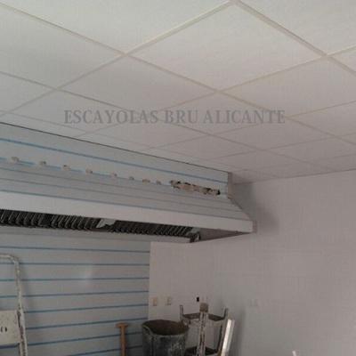 techo desmontable con placas de vinilo