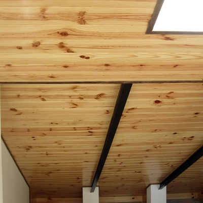 techo madera con vigas metalicas