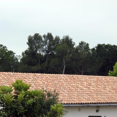tejados 1