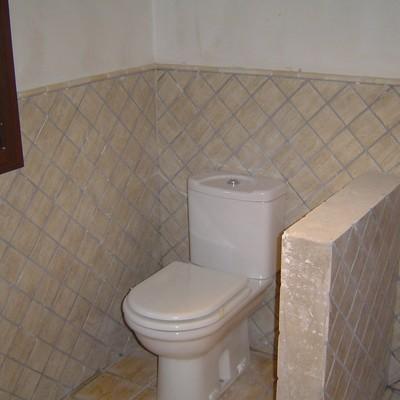 Alicatado de baños