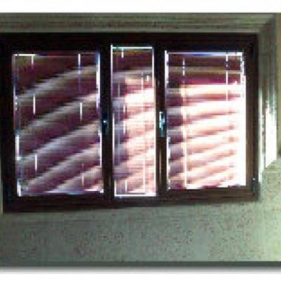 ventanas con mosquiteras