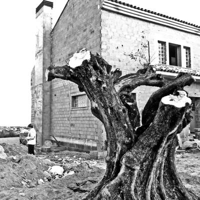 Vivienda unifamiliar en Montserrat
