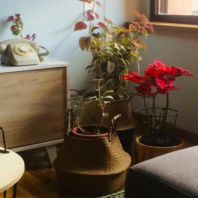 Proyecto de Interiorismo para vivienda. Estilo nordico