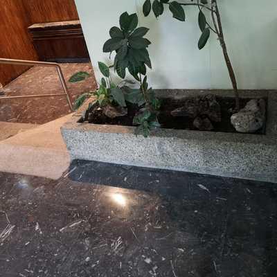 Limpieza general y abrillantado de hall de entrada portal