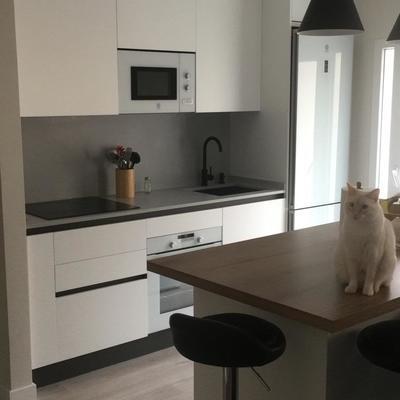 Cocina/salón