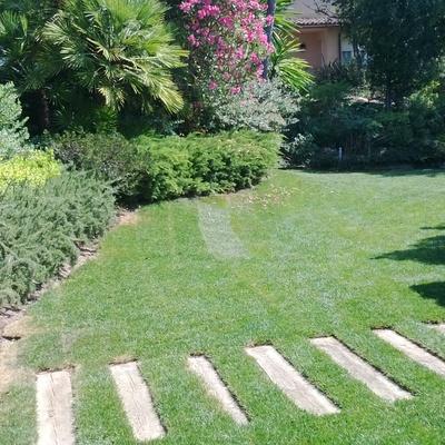 Jardín de chalet en urbanización.