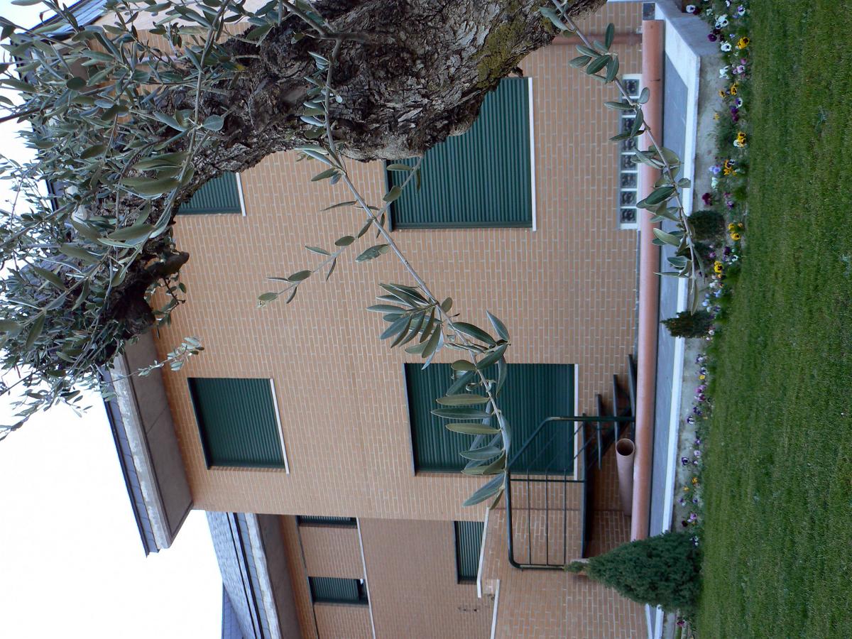 Fachada y Jardín Vivienda Unifamiliar