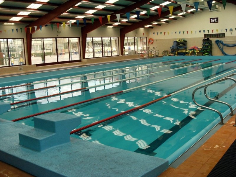 Foto piscina climatizada de bioenerg a borja 214036 for Precio piscina climatizada