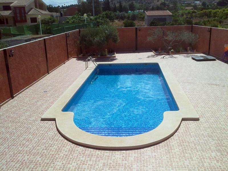Foto piscina privada en alguazas de sol y agua 2m 173504 for Precio piscina gunitada 8x4