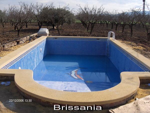 Foto piscina rectangular con coronacion ocre for Coronacion de piscinas precios