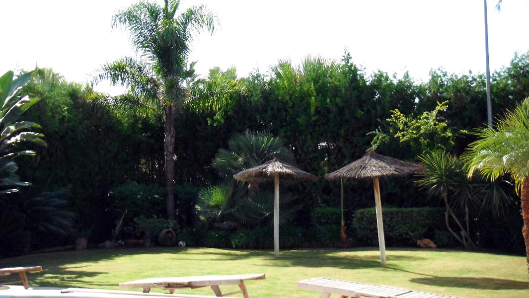 foto sol y jardin de jardines del sur 252356 habitissimo. Black Bedroom Furniture Sets. Home Design Ideas