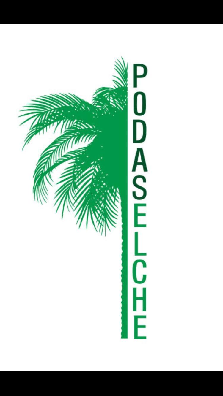 Podaselche