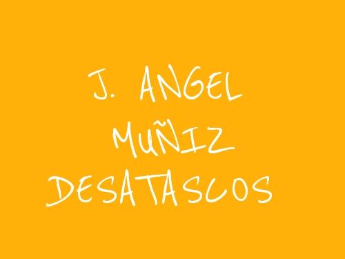 J. Angel Muñiz Desatascos