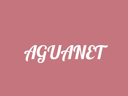 Aguanet