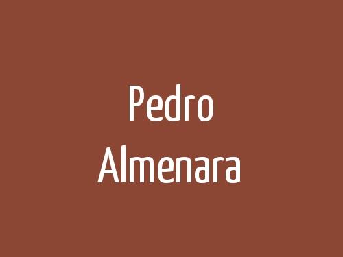 Pedro Almenara