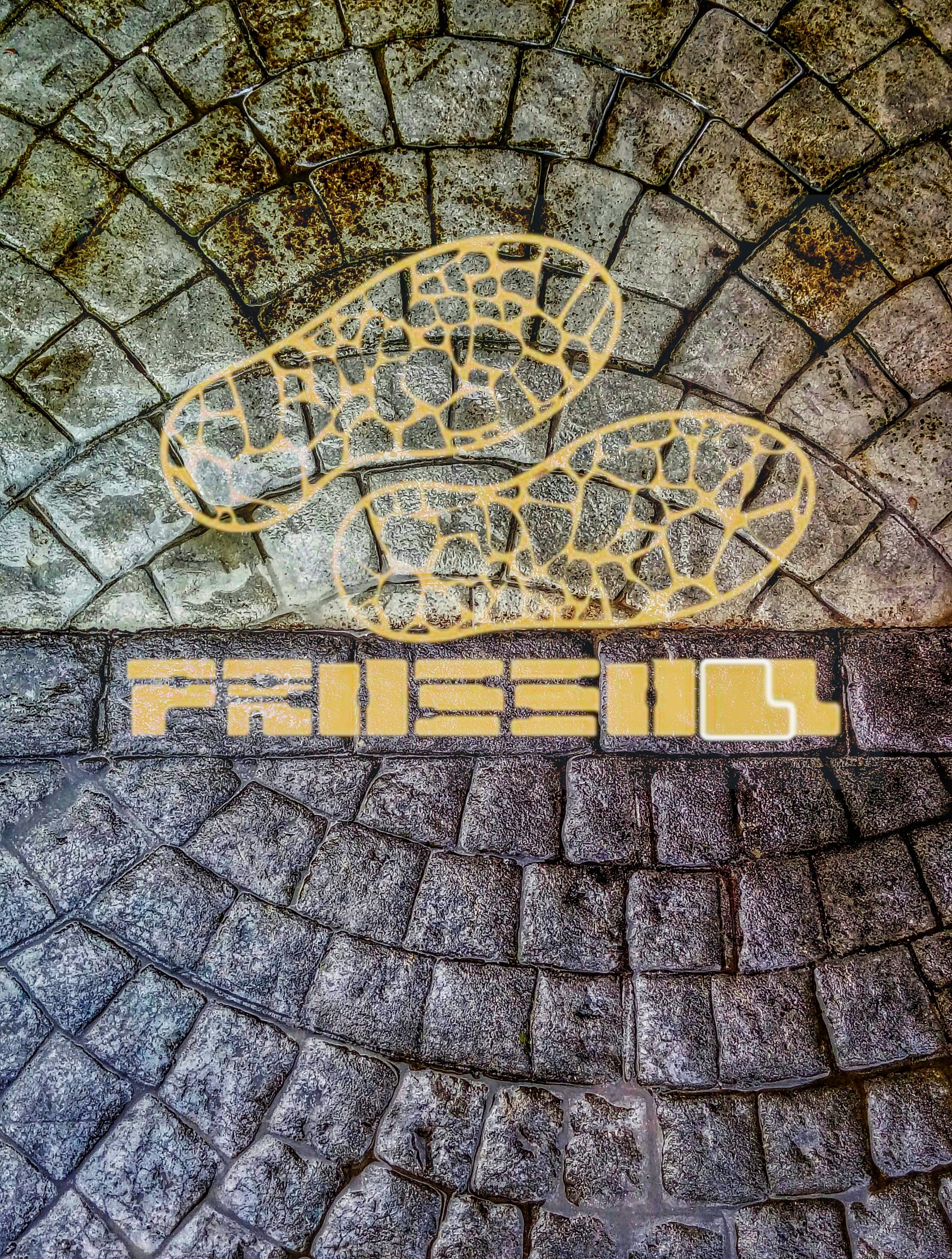 Prossoll