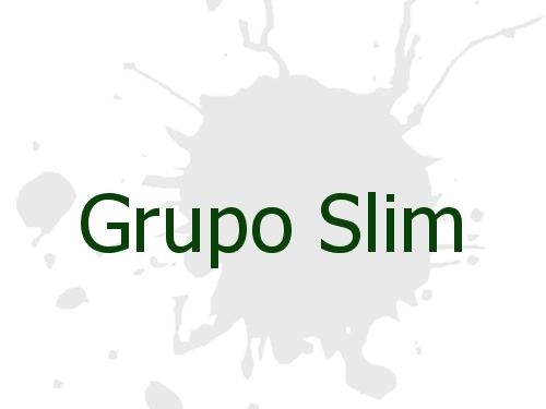 Grupo Slim
