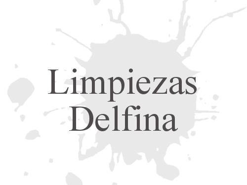 Limpiezas Delfina
