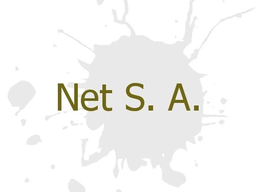 Net S. A.