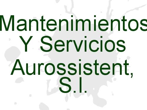 Mantenimientos Y Servicios Aurossistent, S.l.