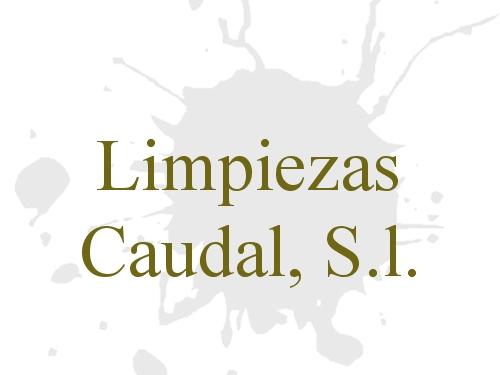 Limpiezas Caudal, S.l.