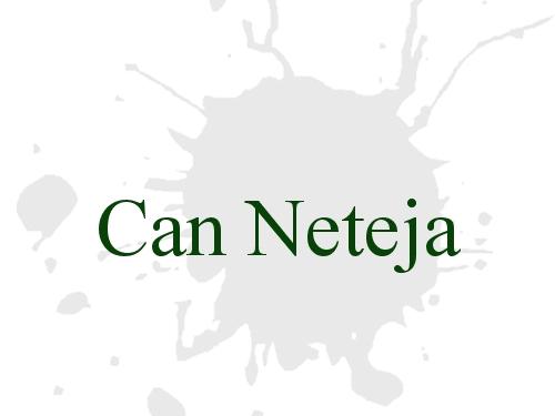 Can Neteja