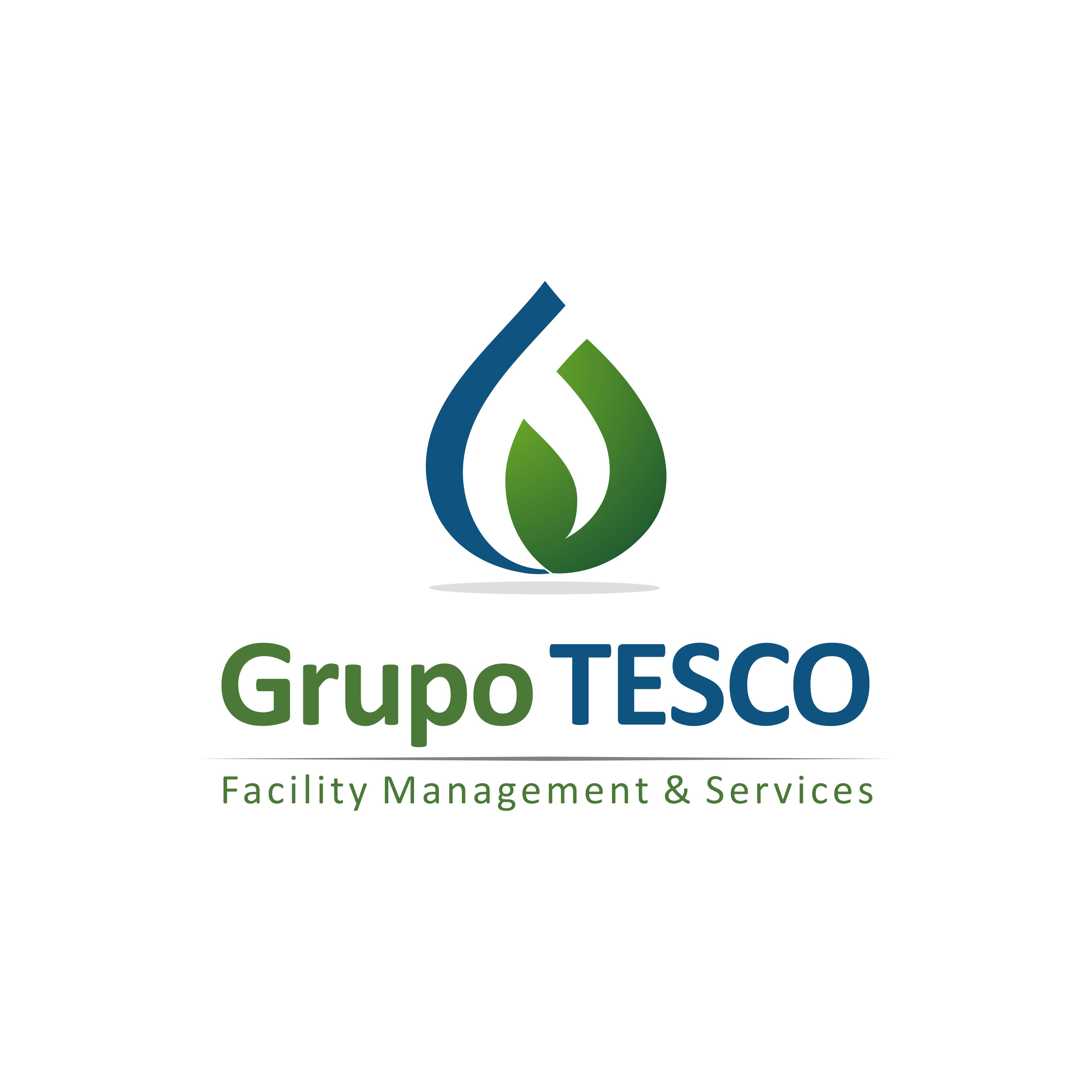 Grupo Tesco Facility Management & Services