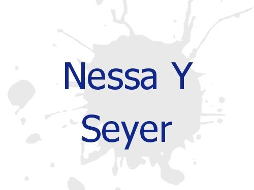 Nessa Y Seyer