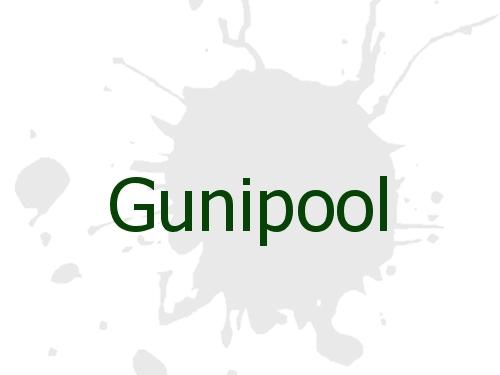 Gunipool