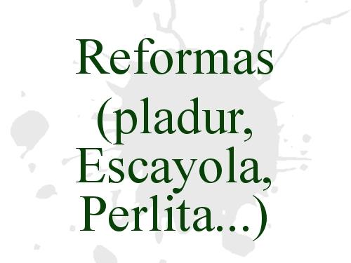 Reformas (pladur, escayola, perlita...)