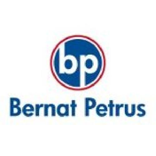 Bernat Petrus