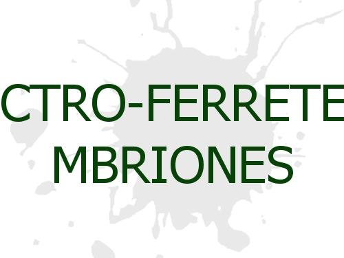 Electro-Ferretería M. Briones